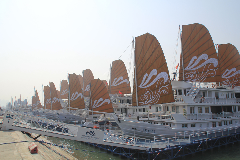 Cruises in Halong Bay